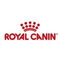 Praca Royal Canin w Polsce