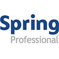 Praca Spring Professional Poland