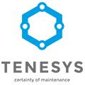 Praca Tenesys