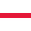 Praca MicroStrategy Poland Sp. z o.o.