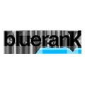 Praca Bluerank Agencja SEM