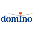 Praca Domino Executive Search