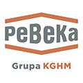 Praca Przedsiębiorstwo Budowy Kopalń PeBeKa S.A.