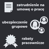 Ikony1